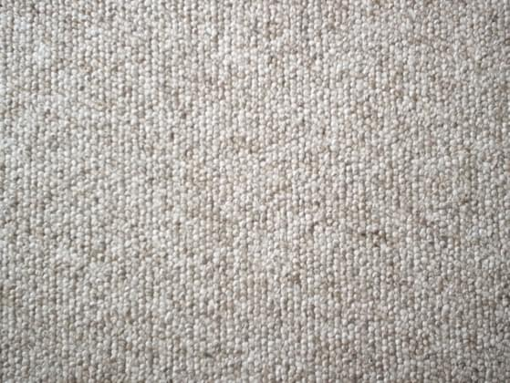 Where's the last place you would want to put carpet in your house?