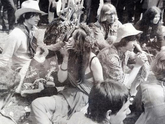 True or false: Much of the 1960s counterculture originated on college campuses.