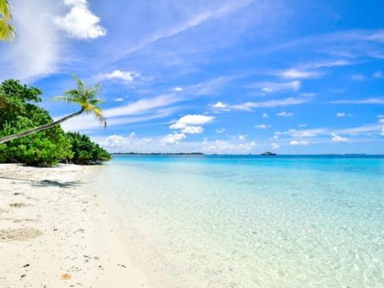 Do you like the beach?