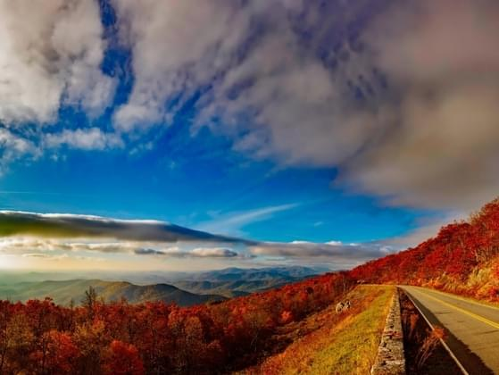 Pick a state to go leaf peeping in: