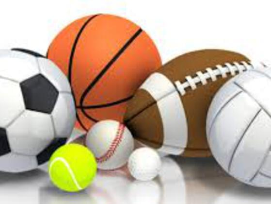 Which is your favorite sport?