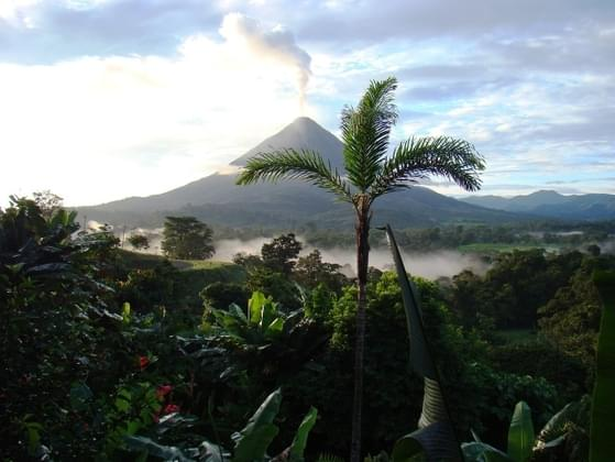 If you won a free trip to Costa Rica, which activity sounds most appealing?
