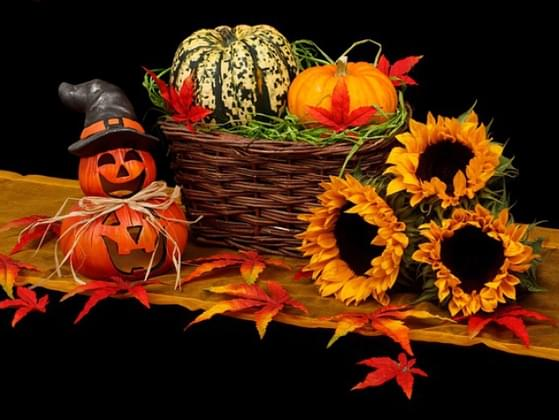 What is your favorite time of year?