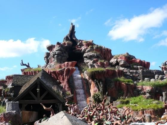 Pick a Disney ride: