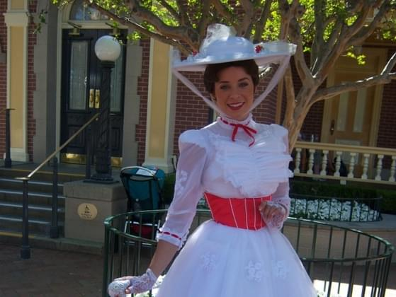 Would you want Mary Poppins to manage your life?