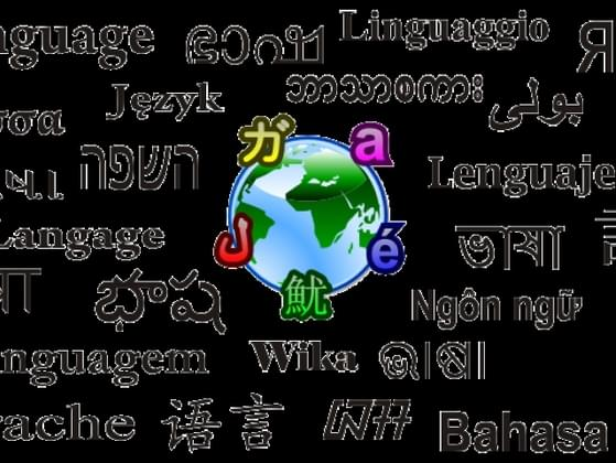Do you speak any languages other than English?