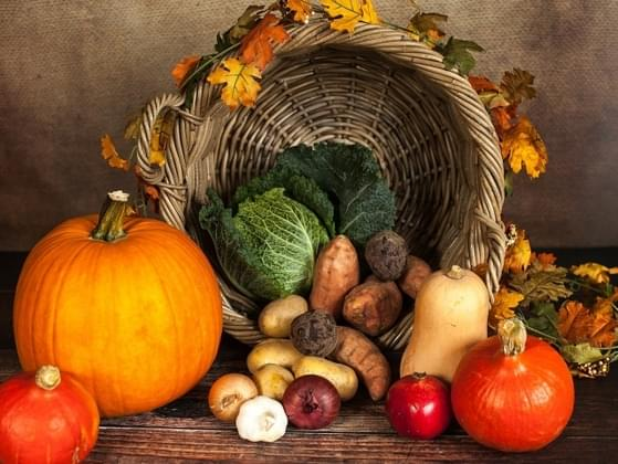 What are you most thankful for on Thanksgiving Day?