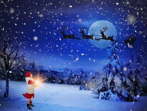 How many reindeer drive Santa's sleigh?