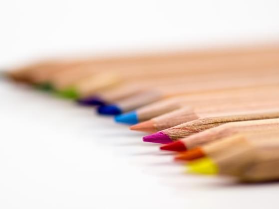Choose a color pallet.