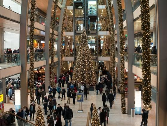 Do you typically shop at the mall or department stores like Target?
