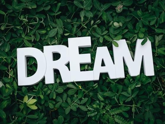 What do you dream about most often?