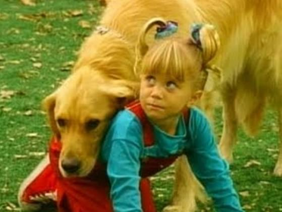 What's the name of this famous TV dog? (Hint: He belonged to a big family that made up a 'full house.')