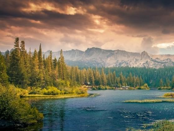 Do you prefer nature or civilization?