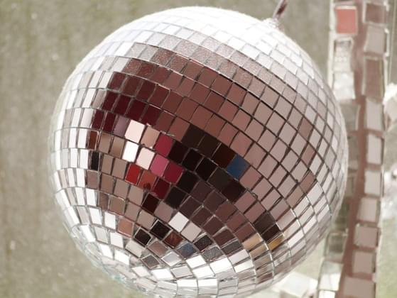 Do you now or have you ever owned a disco ball?