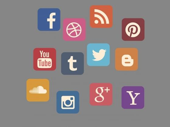 Which social media platform do you use daily?
