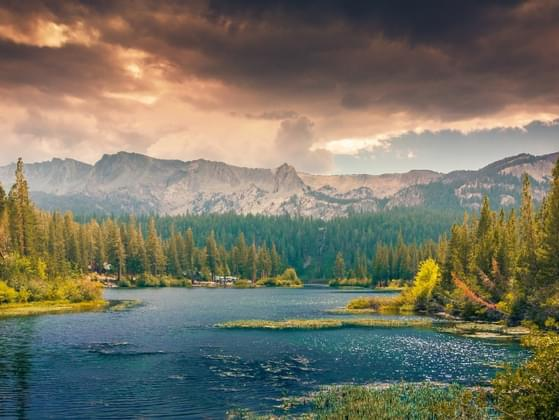 Do you feel recharged after spending time in nature?