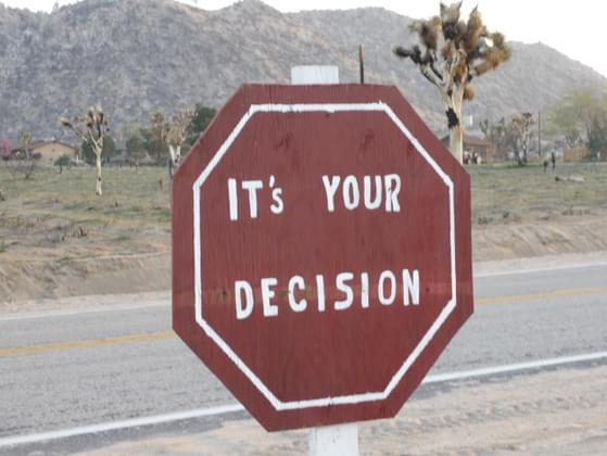 Before making a decision, do you consider the consequences of your actions?