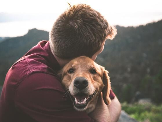 Do you have any beloved pets?