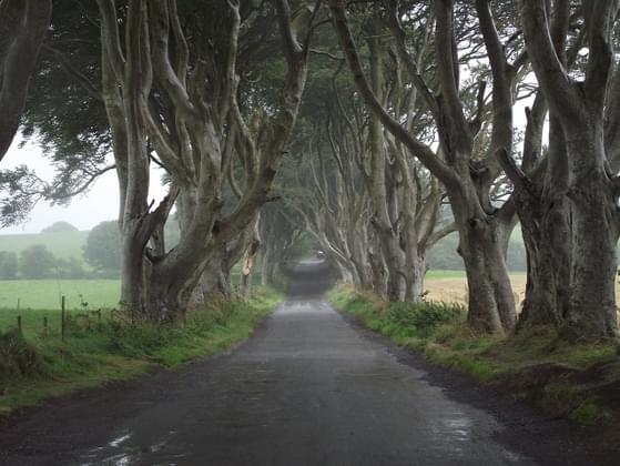 Who would you choose as a travel sidekick across Westeros?