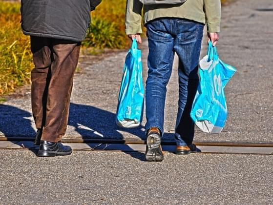 Do you use reusable grocery bags?