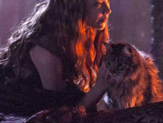 The name of King Tommen's favorite cat is: