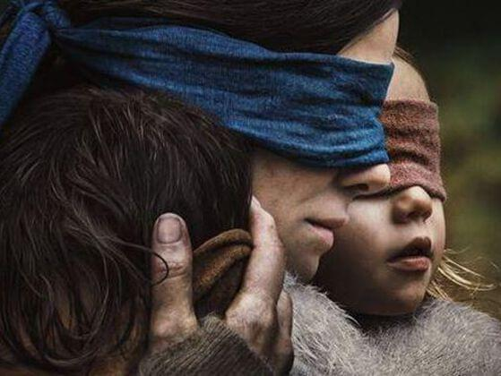 Is Bird Bird Box Netflix's most streamed movie