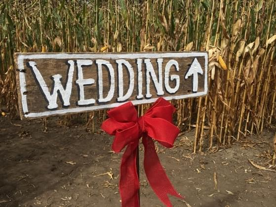 Which type of wedding venue sounds right for you?