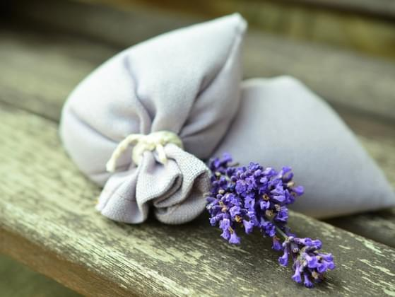 Have you ever dabbled in aromatherapy to improve your mood?