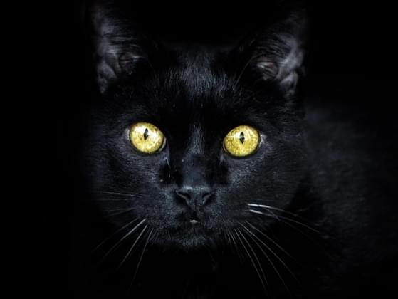 Are you a very superstitious person?