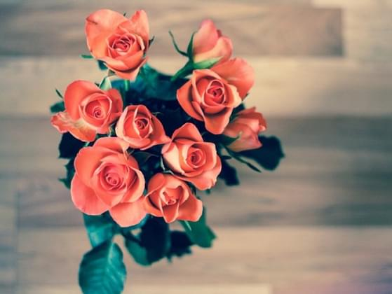Do you enjoy Valentine's Day?