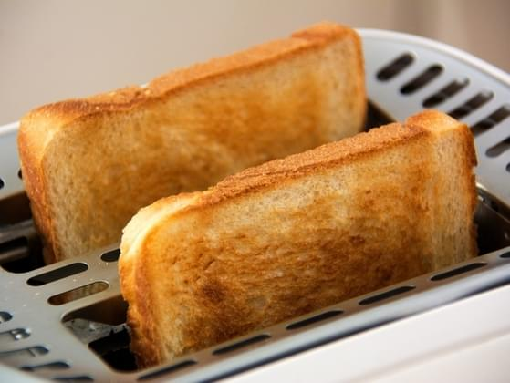 Would you rather eat eggs or toast?