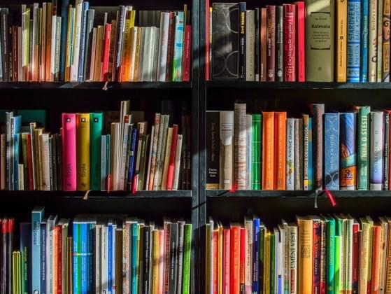 You can choose any book off of the library shelf. What would catch your eye?