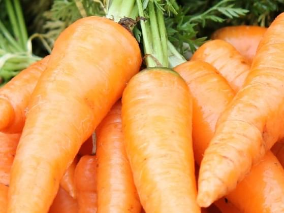 Choose a vegetable!