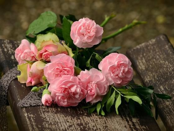 You prefer ______ flowers.