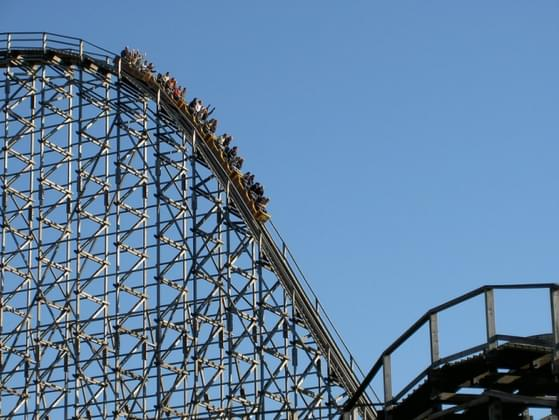 What do you do if you are at an amusement park and you see a ride that looks fun?