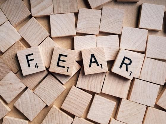 What's your greatest fear in a nutshell?