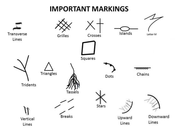 Which of these markings do you have? (If you have multiple, pick the one you have more of)