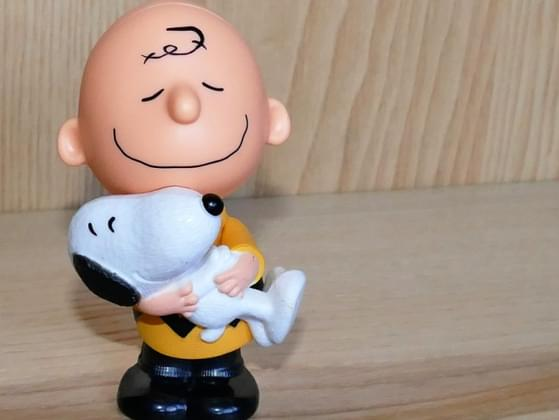 The Peanuts character you most identify with is...