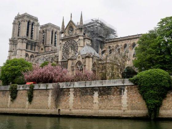 Apart from several sanctuaries what else is there in the site of  Notre Dame?