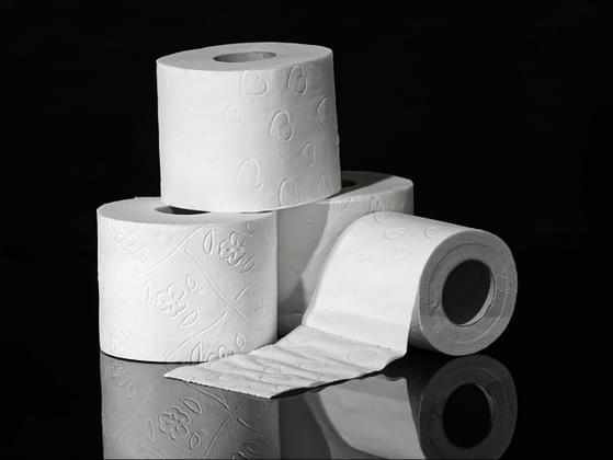 Pick your preferred toilet paper method: