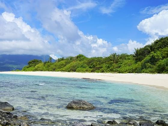 What one item you take on a deserted island?
