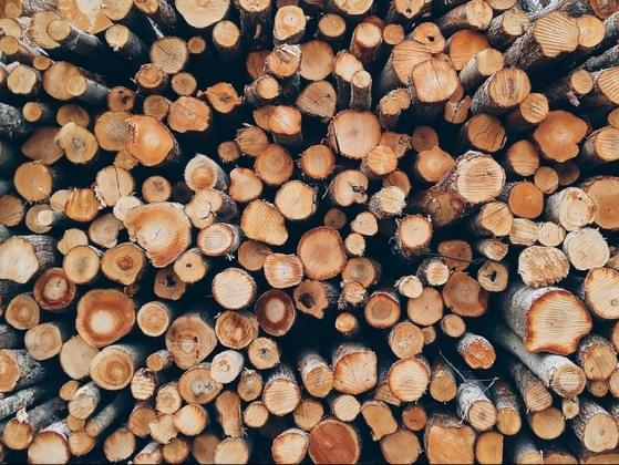 What's your favorite kind of wood?