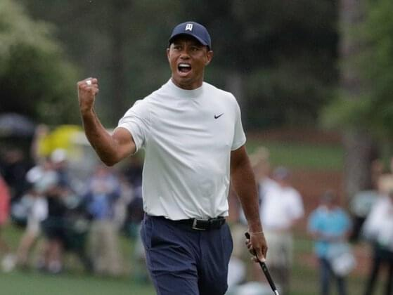In what year did Tiger turn professional?