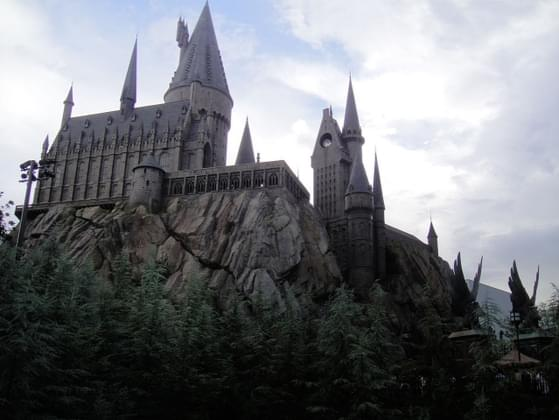 What would be your best subject at Hogwarts?