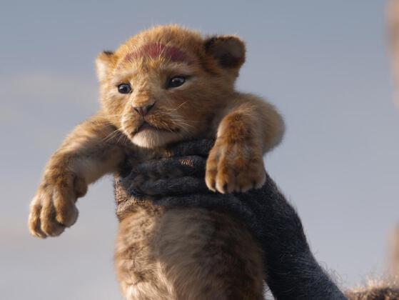 Who voiced for young Simba?