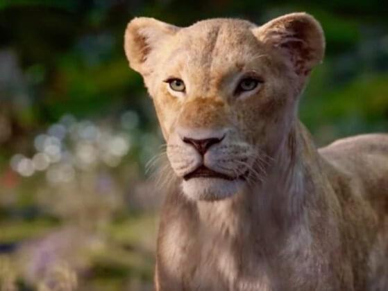 Who voiced for Nala?