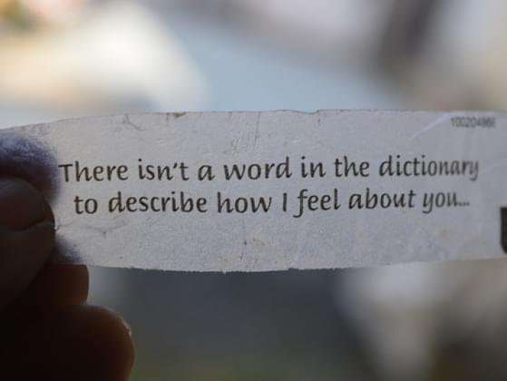 Choose the words that make you melt: