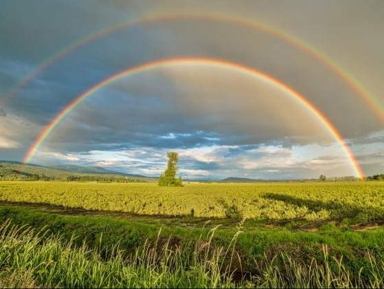 What do you think about when you see a rainbow?