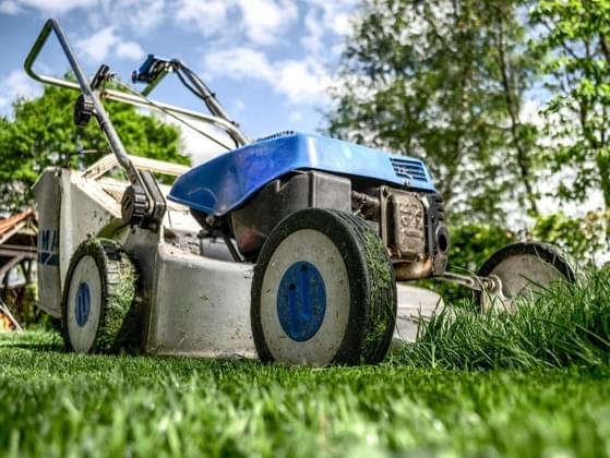 Who mows your lawn?