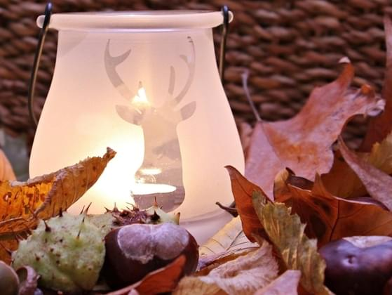 Which fall scent truly warms your heart?